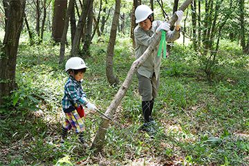 An employee and his child as forest improvement volunteers (Gunma Insect World)